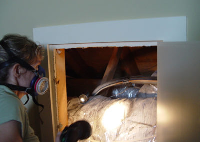 030-attic-inspection
